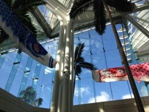 コンベンションセンターで開かれているホノルルフェスティバル。鯉のぼりが空を飛んでいます。