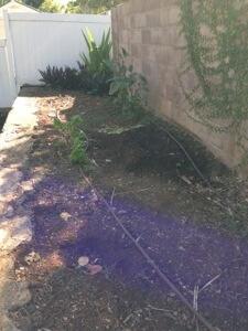 キュウリの跡地に盛り土をしてネギセクションを造りました。楽しんでいる茄子はウドンコ病に。。。残念ー。