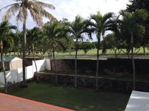 芝刈り、トリム、ヤシの木、塀の上まで頑張りました! 道路の向こうはハワイカイゴルフ場です。うー行けないー!