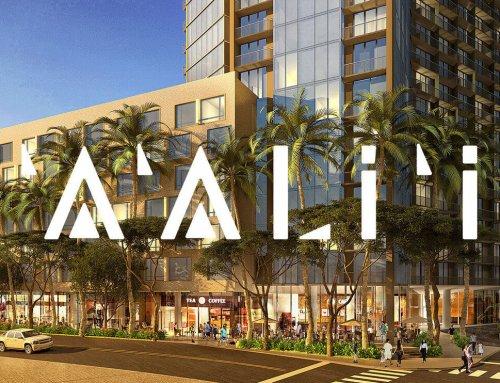 カカアコ新築:アアリイ('A'ali'i )の全貌が見えてきました