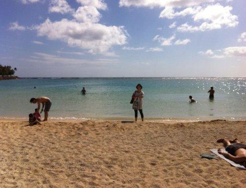 ハワイ生活7年目に入りました。