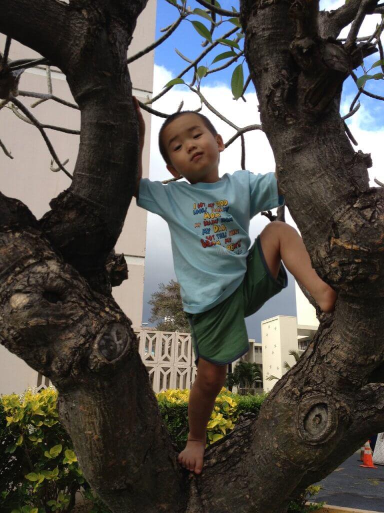 ハワイで大家:移住した2012年の長男3歳