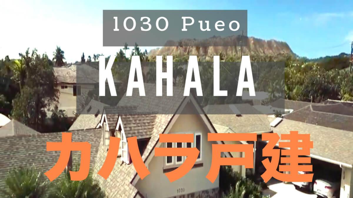 1030 Pueo Video